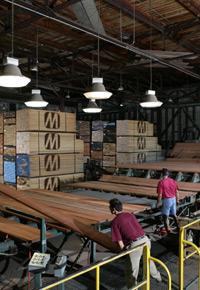 Grading dried lumber