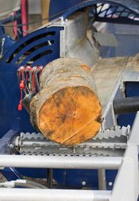sawmill cutting log into boards