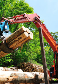 loading logs onto logging trucks