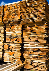 stacks of wood drying