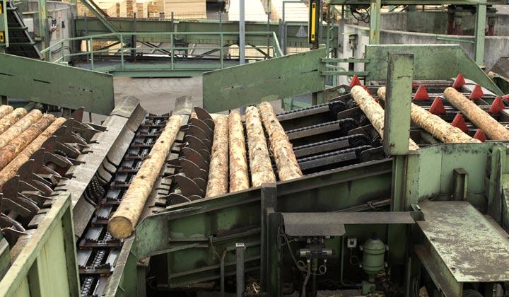 debarked logs rolling at lumber yard machine